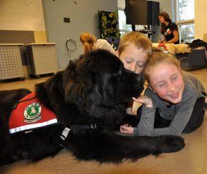 Friends fur life help build skills for life